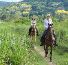 passeggiate_a_cavallo